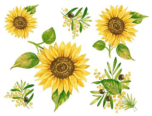 Bild von d-c-fix Spirit Flow Sunflowers